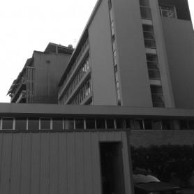 New School of Nursing- AUH